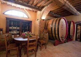 Wine Tasting in Castel di Pugna winery