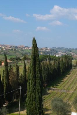 Castel di Pugna estate landscape